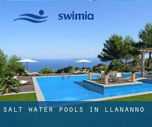 Salt Water Pools in Llananno