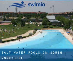 Salt Water Pools in South Yorkshire