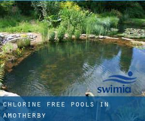 Chlorine Free Pools in Amotherby