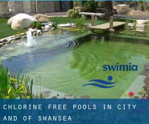 Chlorine Free Pools in City and of Swansea