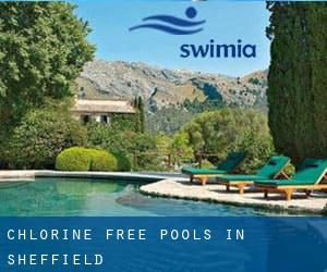 Chlorine Free Pools in Sheffield
